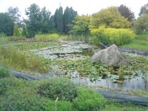 Zbiornik wodny wyłożony folią
